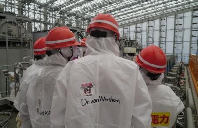 (c) TEPCO