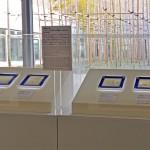 2011年1月24日 ⒸGerman Embassy Tokyo