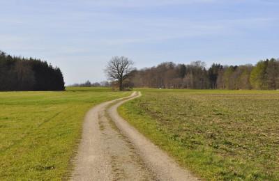 ミュンヒナー・ヤコブスヴェーク(Münchner Jakobsweg)