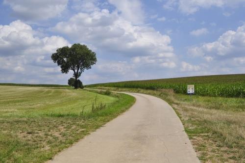延々と続く畑のなかの道を行きます。そろそろ足も痛くなってきて……しかし歩くしかありません。