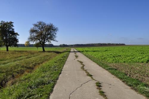 自転車で行くには最高の道!