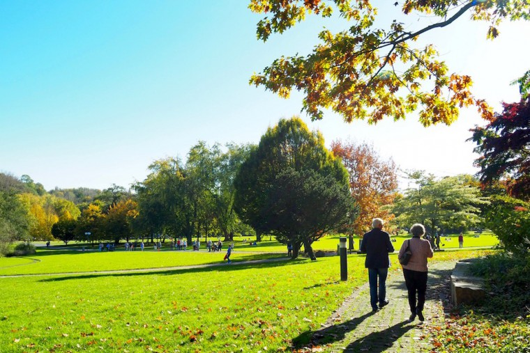 老若男女が楽しむヴェストファーレンパーク。色づき始めたもみじが美しく輝いていた Photo: Aki SCHULTE-KARASAWA