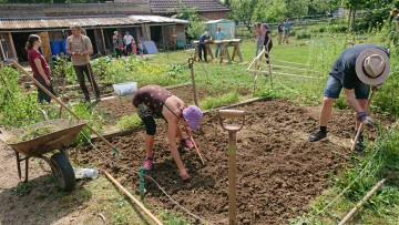 共同農園での作業の様子
