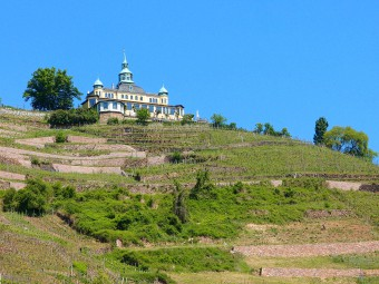 ザクセン・ワイン街道では素晴らしい景観も楽しめます