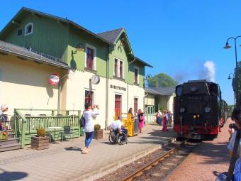 森の中を走る蒸気機関車は旅情たっぷり