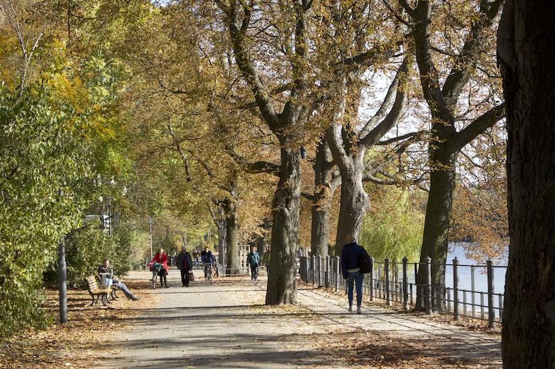ドイツ人は散歩が大好き。