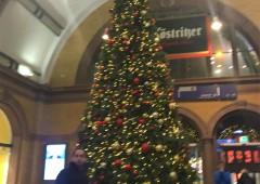 駅にも大きなクリスマスツリーが!