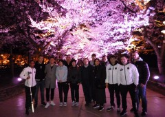 高田公園の夜桜見物 Ⓒ上越市