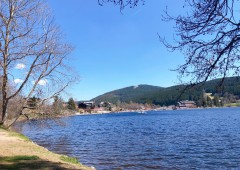 Titisee See