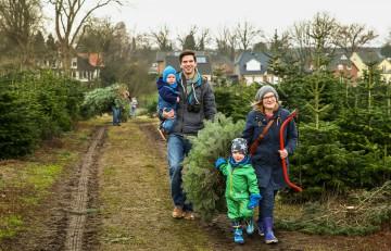 モミの木を買う家族©dpa
