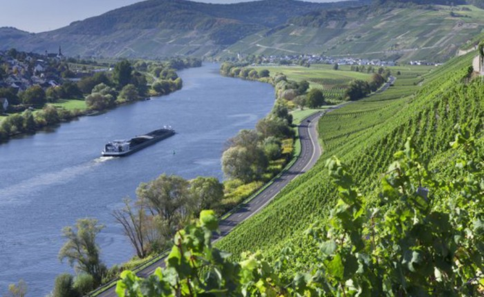 ©picture alliance / Arco Images GmbH  Ship on river Moselle, at Kesten and Filzen, Rhineland-Palatinate, Germany / Mosel