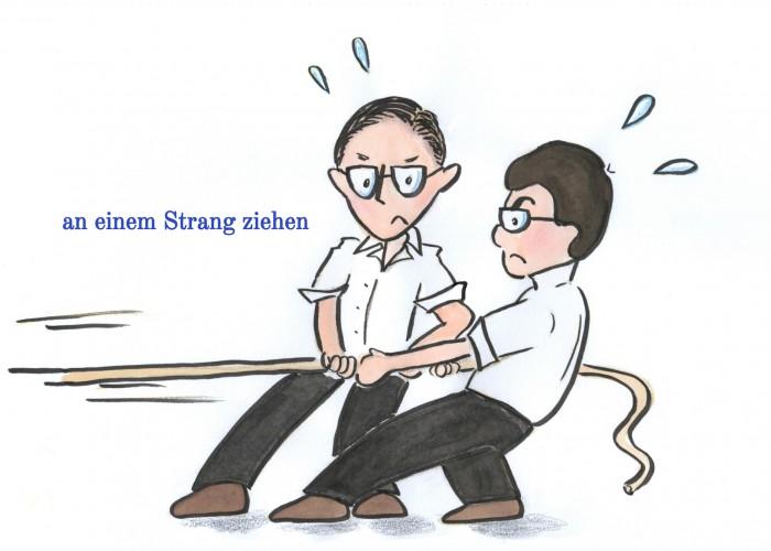 an einem Strang ziehen (2)