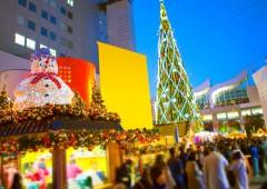 Ⓒドイツ・クリスマスマーケット大阪実行委員会(事務局)