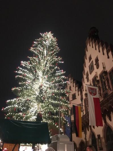 クリスマスマーケットでのクリスマスツリー。マーケット自体はクリスマスイブ前に終わりますが、ツリーは1月まで立っています。 ©tomogermany