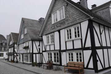 白黒の木組みと鱗状の屋根の家々